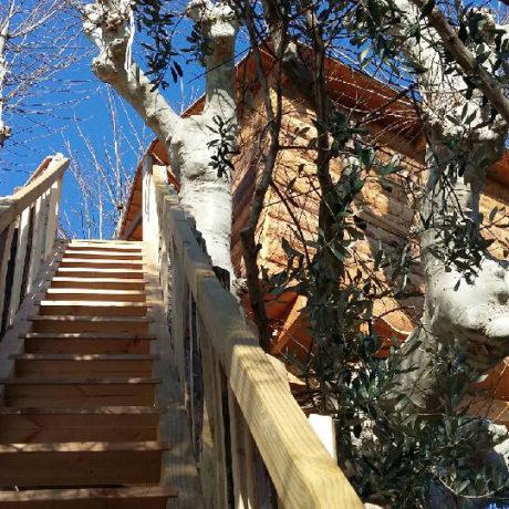 Escalier vers la cabane